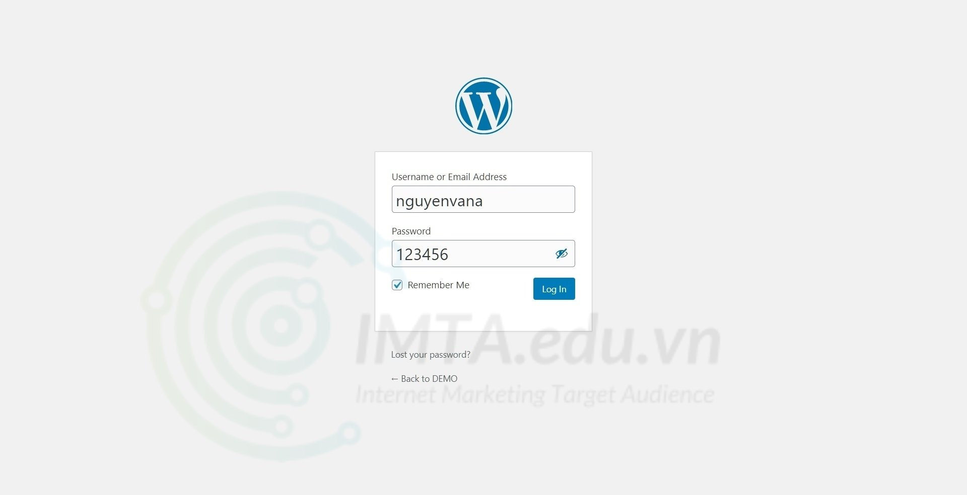 Điền thông tin đăng nhập website
